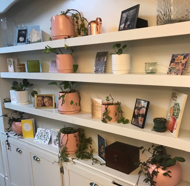 four shelves of plants, candles, photos, and cards